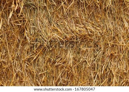 Straw bale close up - stock photo