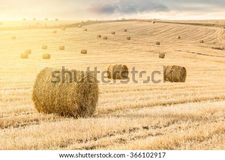 Straw bales at sunset  - stock photo