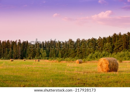 Straw bales in the autumn field - stock photo