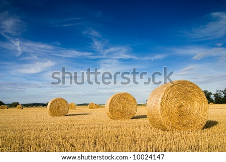 Straw bales on farmland with blue cloudy sky - stock photo