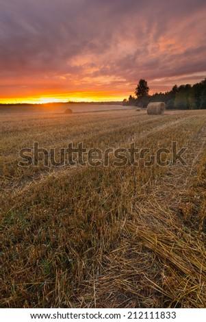 straw bales on stubble field at sunset - stock photo