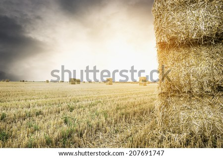 straw square bale on field with sunset cloudy  sky , nature background - stock photo