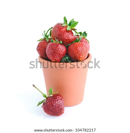 Strawberries in a clay pot - stock photo