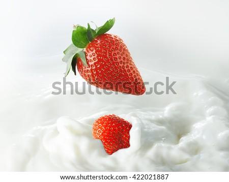 strawberries in milk splash - stock photo
