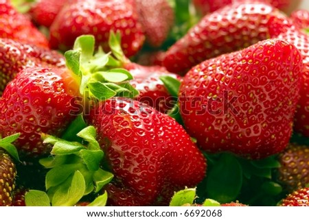 Strawberries vol. 3. Close up of a bunch of strawberries - stock photo