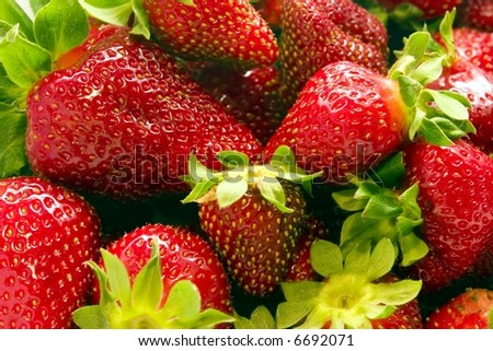 Strawberries vol. 2. Close up of a bunch of strawberries - stock photo