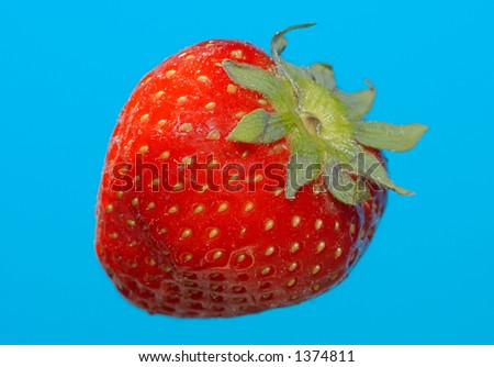 strawberry on a blue background - stock photo