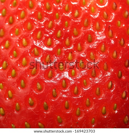 Strawberry Texture. Berry Background. Macro - stock photo