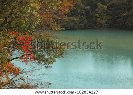 stream and Autumn leaf color  in Ichinoseki - stock photo