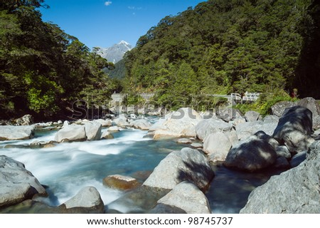 Stream creek in a mountain forest, New Zealand - stock photo