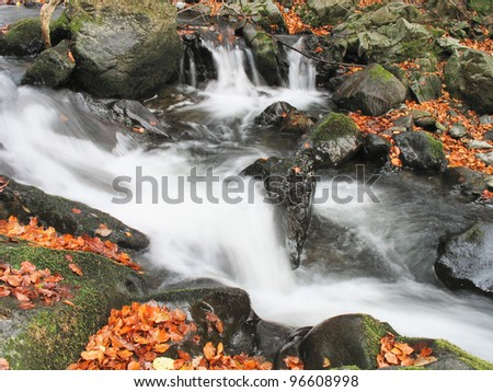 stream in autumn forest - stock photo