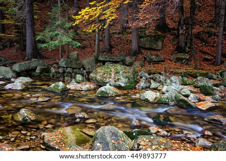 Stream in autumn mountain forest, tranquil scenery in natural environment of the mountains - stock photo