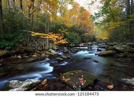 Stream in fall colors, the great smokey mountains national park. - stock photo