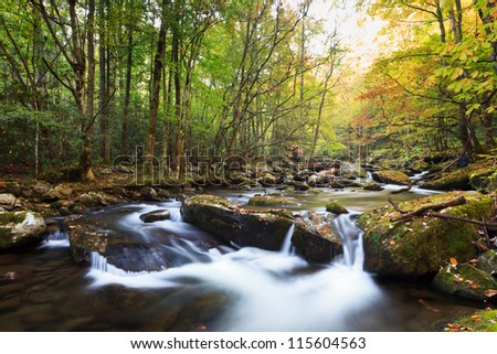 Stream in fall colors, the great smokey mountains national park. Tremont area - stock photo
