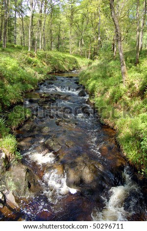 Stream in Queen Elizabeth Forest Park, Aberfoyle, Scotland - stock photo