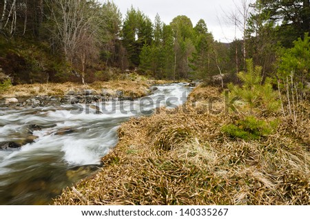 Stream in the Cairngorm mountains / Rocky stream rushing down the Cairngorm mountains in Scotland - stock photo