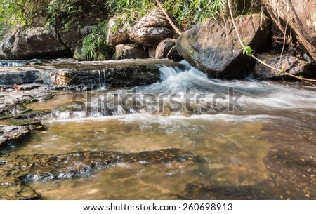 stream in the forest - stock photo
