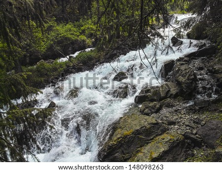 Stream in the mountain - stock photo