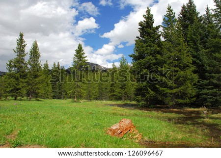 Stream Meanders Through Alpine Valley In Yellowstone National Park - stock photo