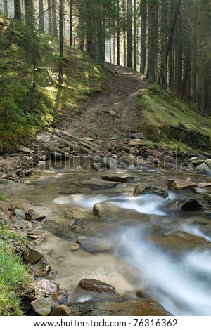 stream of the river in the woods - stock photo