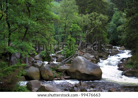 streambed of river oker in german harz region - stock photo