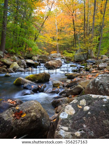 Streaming Autumn Water  - stock photo