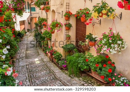 Street in small town in Italy in sunny day, Umbria - stock photo