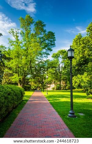 Streetlight and bushes along a brick walkway at John Hopkins University in Baltimore, Maryland. - stock photo