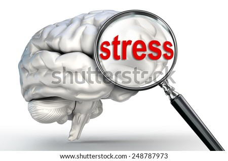 stress word on magnifying glass and human brain on white background - stock photo