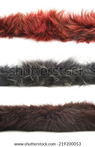 Strip of fur isolated over the white background, set of three color versions: red, gray and brown - stock photo