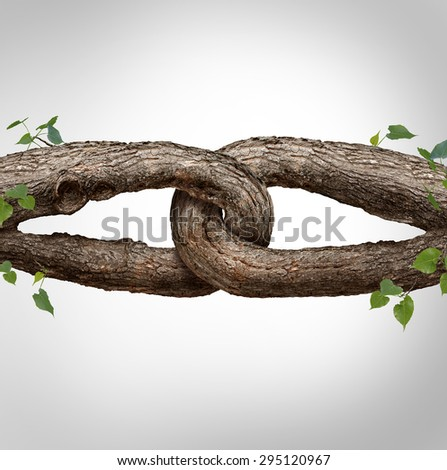 Strong chain concept connected as two different tree trunks tied and linked together as an unbreakable chain as a trust and faith metaphor for dependence and reliance on a trusted partner. - stock photo