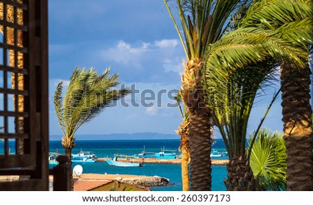 Strong wind on the coast in a tropical climate. Palm leaves on the wind in inclement weather - look on the sea of window view. - stock photo