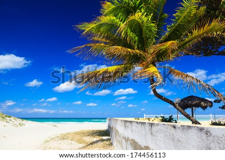 strong wind on the ocean on a sunny day - stock photo