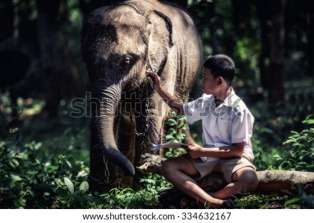 Student little asian boy with him elephant, countryside in Thailand - stock photo