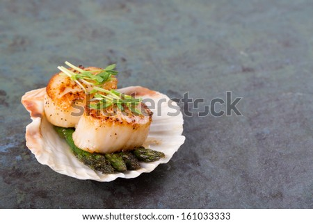 Studio closeup of seared scallops, garnished with pea shoots and served on a bed of asparagus, presented on a scallop shell. Over slate background with space for your text - stock photo