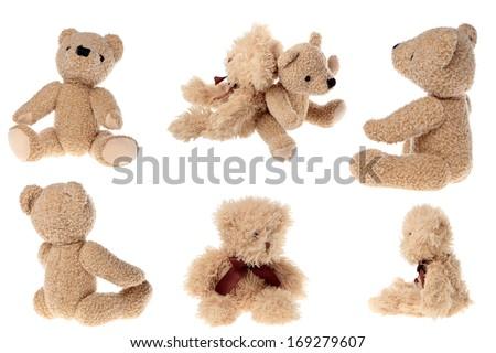 studio image of teddy bear set - stock photo