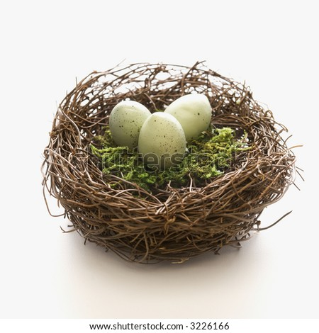 Studio still life of bird's nest with three speckled eggs. - stock photo