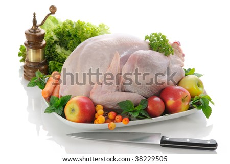 Stuffed Turkey - stock photo