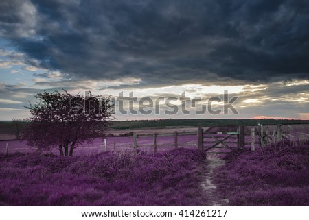 Stunning English countryside landscape over fields at sunset with surreal purple tint concept - stock photo