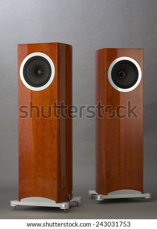 Stunning Hi Fi Speakers with Nature Oak Wood - stock photo