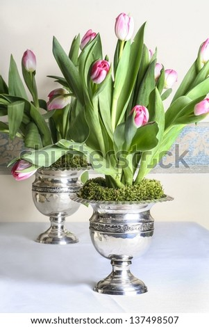 Stunning huge bouquets of pink tulips in silver antique vases - stock photo