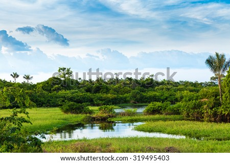Stunning landscape in Amazon, Brazil - stock photo