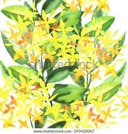 Stylish flowers illustration, watercolor painting - stock photo