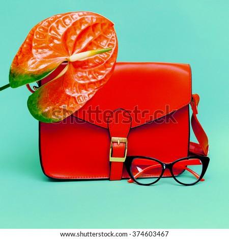 Stylish Ladies Sunglasses & Handbag. Focus on Red. - stock photo