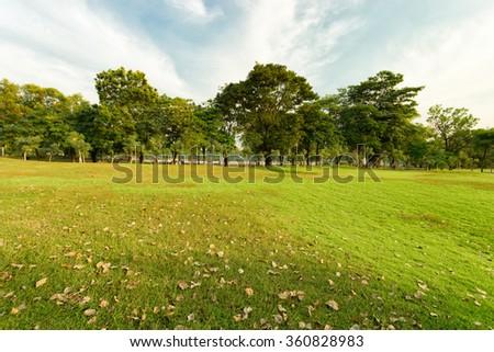 Suan rod fai open public park, Bangkok - stock photo
