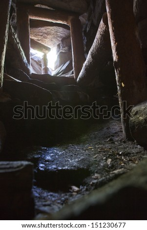 Subterranean - stock photo