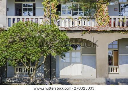 Suburban house with tree - stock photo