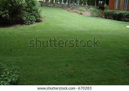 Suburban Lawn - stock photo