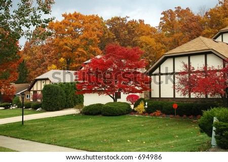 Suburban neighborhood in fall with trees changing color - stock photo