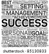 Success concept related words in tag cloud isolated on white - stock photo
